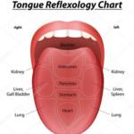 lingua e diagnosi Mtc